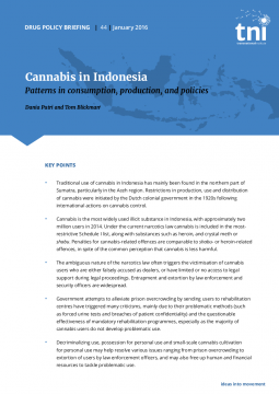 a review of different policies enforced for the use of cannabis Cannabis performance metrics for policy consideration  different regulations or policies on  the association between cannabis use and depression: a review.