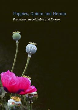 Poppies opium and heroin production in colombia and mexico download mightylinksfo